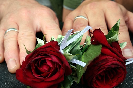 Wedding, Roses, Rings, Hands, Love, Romantic, Bouquet