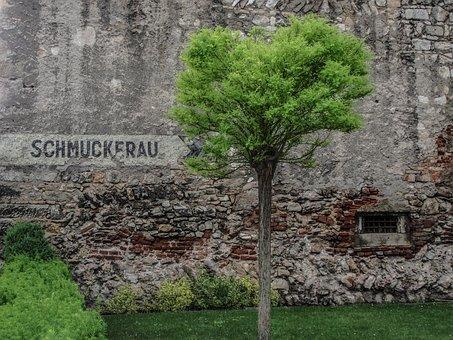 Green, Grass, Meadow, Bush, Nature, Wall, Facade, Stone