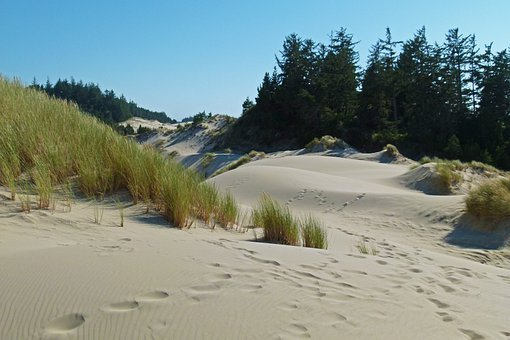 Sand Dunes, Dunes National Park, Oregon, Usa