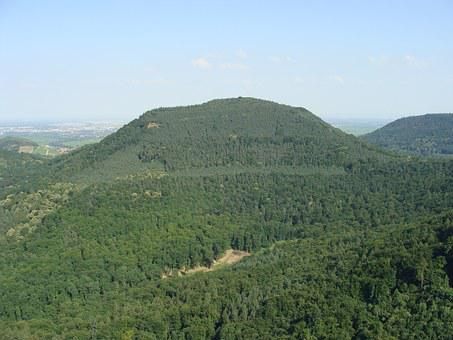 Föhrlenberg, Palatinate Forest, Hill, Mountain, Forest