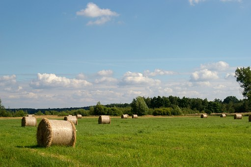 Hay, Beams, Rolls, Summer, Landscape, Nature, Clouds