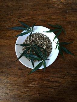 Hemp Seeds, Sativa, Hemp, Protein, Seeds, Food