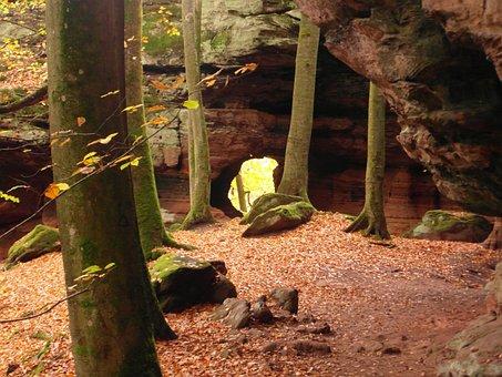 Sandstone, Sand Stone, Forest, Autumn, Emerge, View