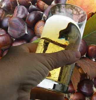 Wine Tasting, Wine, Wine Harvest, New Wine, Maroni