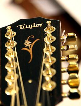 Guitar, Acoustic Guitar, Strings, Taylor, 12 String