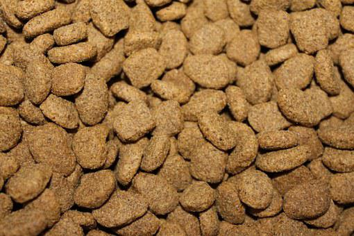 Kibble, Dog Food, Pet, Dog, Animal, Feed, Canine, Brown