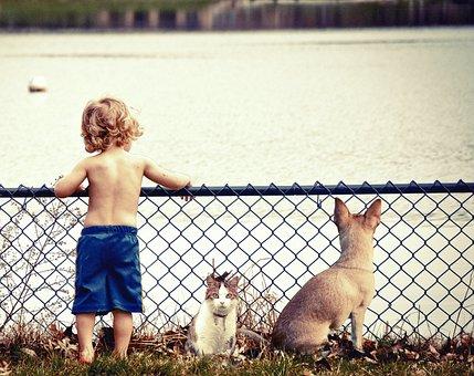 Boy, Kids, Water, Cute, Joy, Outdoor, Lake, River
