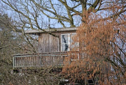Treehouse, Hut, Tree, Nature, Home, Live, Accommodation