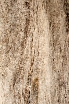 Wood, Grain, Texture, Panel, Timber, Background, Groove