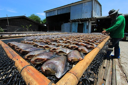 Fresh Water Fish, Grill, Pla Salit, Bamboo, The Sun