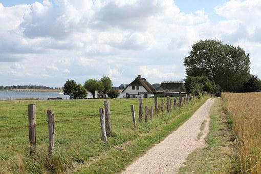 Schlei, Promenade, Bank, Mecklenburg, Fish, Peaceful