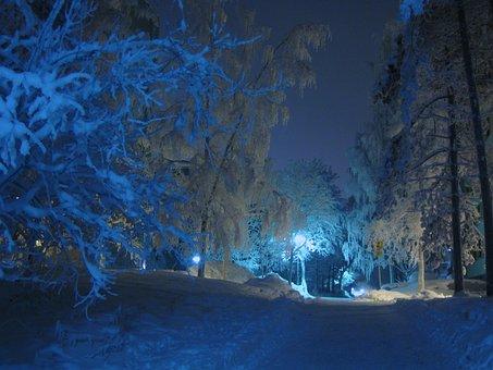Winter, Night, Street Lamp, Shadow, Blue Shade, Snow