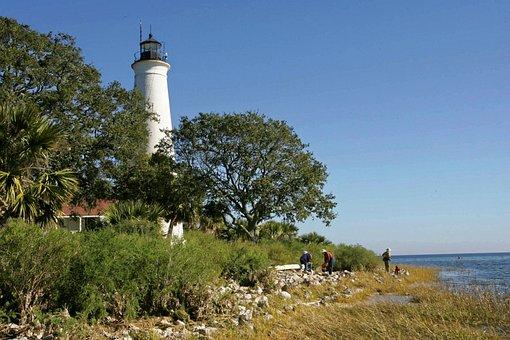 Lighthouse, Trees, Coastline, St Marks Lighthouse