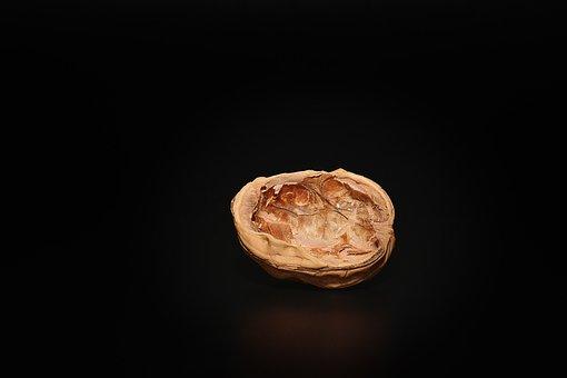 Walnut, Empty Walnut, Empty, Halved Walnut, Cut In Half