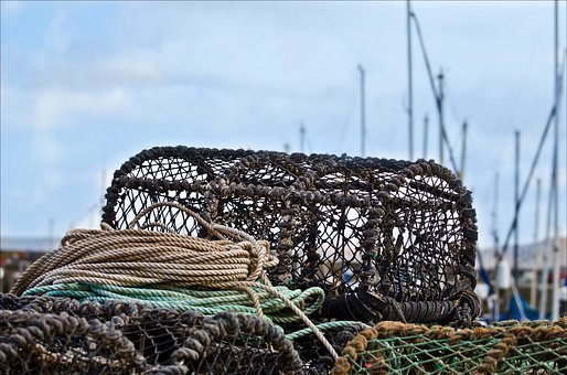 Trap, Crab, Pots, Lobster, Coastal, Fishery, Coast
