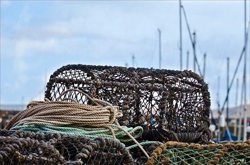 Trap, Crab, Pots, Lobster, Coastal, Fishery, Coast
