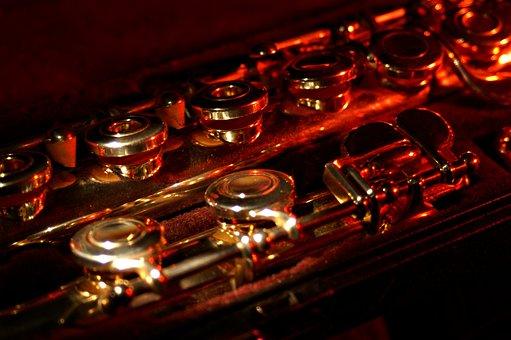Flute, Disassembled, Box, Folding Mechanism, Ring Valve