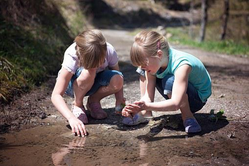 Children, Girl, Nature, Out, Water, Puddle, Tadpoles