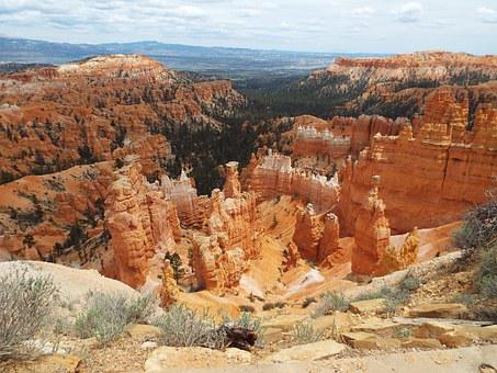 Bryce Canyon, National Forest, Utah, Forest, Bryce