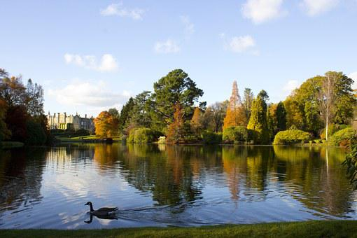 Sheffield Park, Reflection, Lake, Autumn, Water