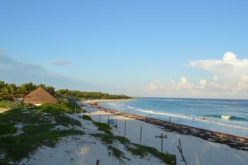 Tulum, Beach, Sea, Sand, Costa, Sky, Trunk, Dawn, Palms