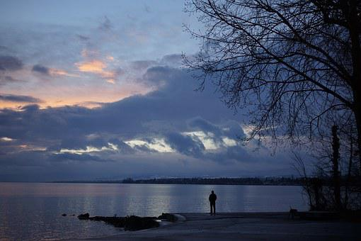 Lake, Water, Lake Geneva, Switzerland, Vaud, Person