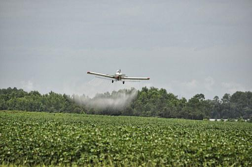 Airplane, Crop Duster, Dangerous, Agriculture, Aircraft