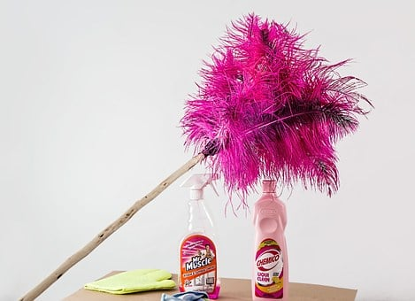 Feather Duster, Cleaning, Housework, Cleaner