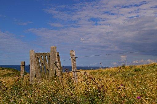 Gate, Denmark, Danish Coast, Island, Fyns Hoved