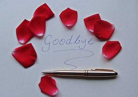 Goodbye, Word, Rose Petals, Red, Pen, Gold, Shiny