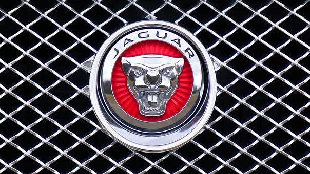 Jaguar, Logo, Emblem, Car, Design, Icon, Silver, Auto