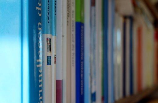 Books, Bookshelf, Read, Literature, Book, Library
