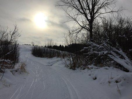Snow, Xc Skiing, Cross-country Ski, Ski Trail