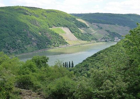 Rhine, Bank, River, Wine Terraces, Germany