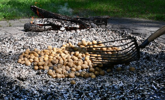 Potato Fire, Potato Roast, Embers, Eat, Drink, Autumn