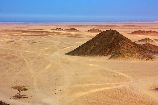 Desert, Sand, Tree, Mountain, Hill, Africa, Egypt