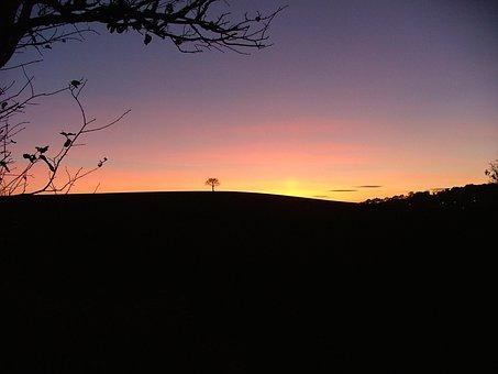 Sunset, Stonnal, Aldridge, West Midlands, Tree, Alone