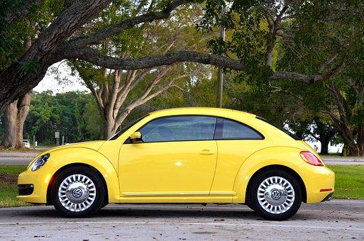 Yellow Car, Park, Trees, Green, Florida, Parking