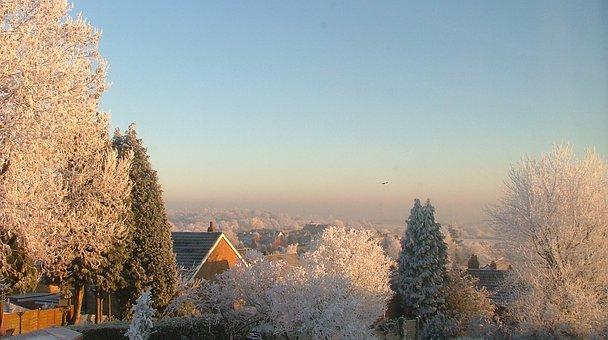 Snow, Trees, Morning, Freezing, Ice, Sunrise, Winter