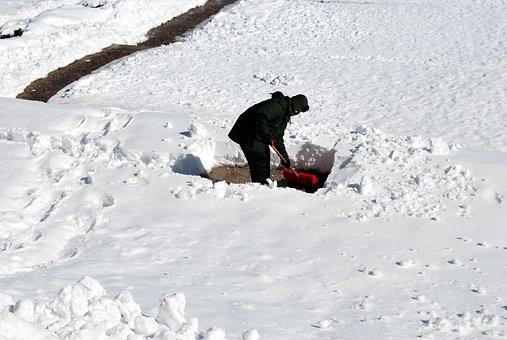 Shoveling, Man, Snow, Work, Male, Tool, Equipment