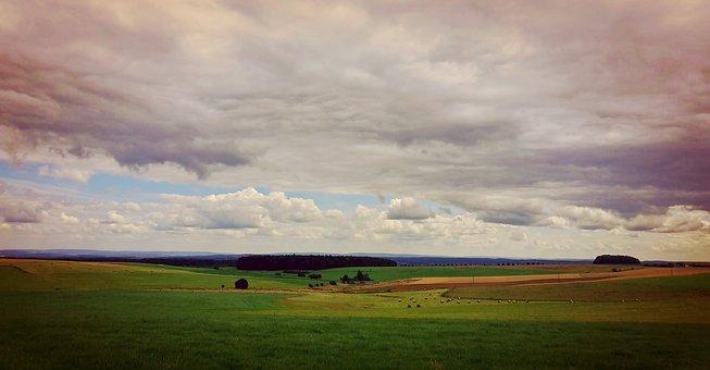 Eifel, Fields, Landscape, Pasture, Agriculture, Meadow