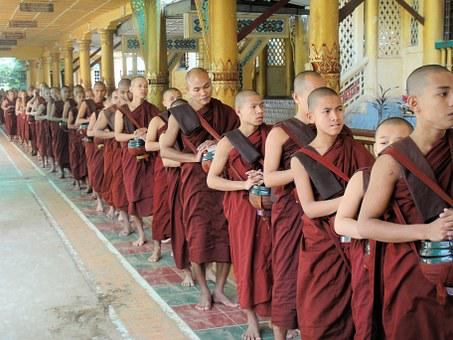 Buddhism, Monks, Lunch, Food, Luncheon, Midday Meal