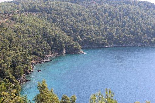 Turkey, Mugla, Akbuk, Nature, Forest, Marine