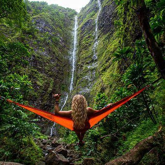 Adventure, Forest, Hammock, Nature, Outdoors, Person