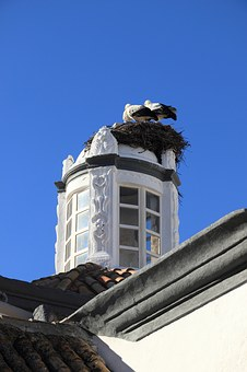Portugal, Faro, Building, Tower, Nest, Storks