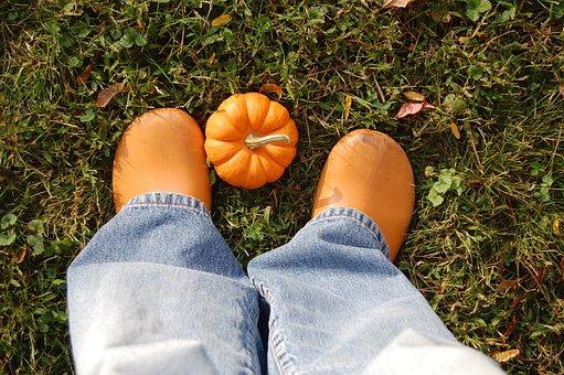 Fall, Autumn, Pumpkin, Garden Clogs, Grass, Ground