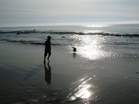 Carlsbad, California, Beach, Seaside, Sunset, Ocean