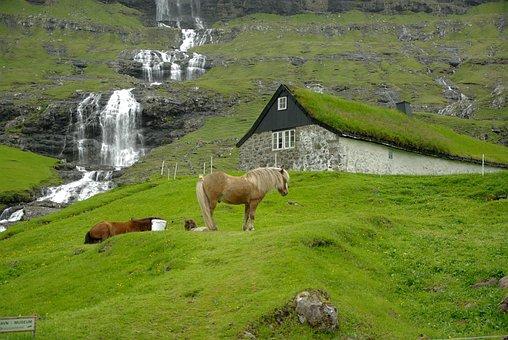Faroe Islands, Cascade, Horses, Fjord