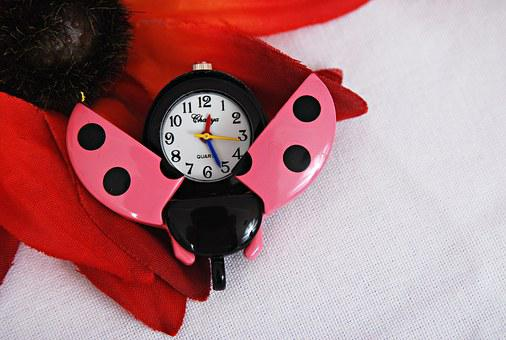 Watch, Ladybug, Pink, Jewel, Jewelry, Insects, Time