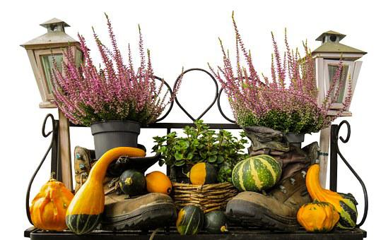 Autumn Mood, Pumpkin, Autumn, Decoration, Gourd